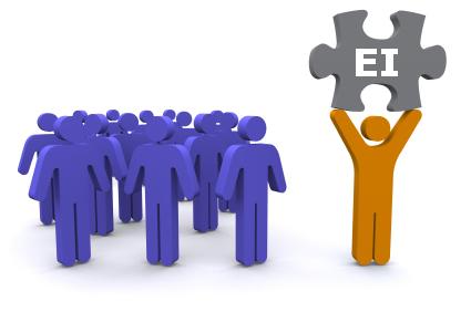 Ei2 EQ Assessment